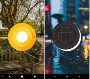 Oreo-Easter-Egg-Android-8.1