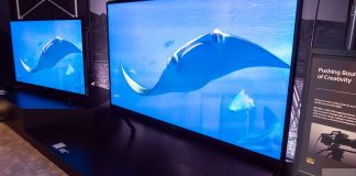 sony 8k tv at CES 2019