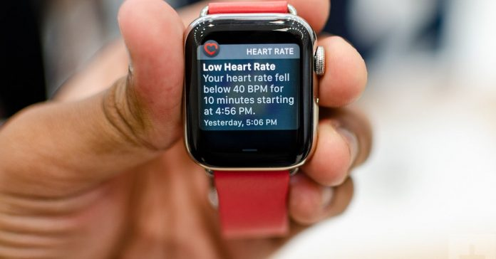 apple health and fitness features